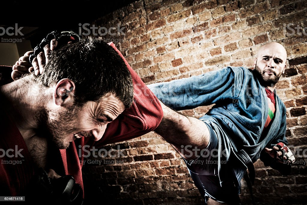 MMA fighters during combat stock photo