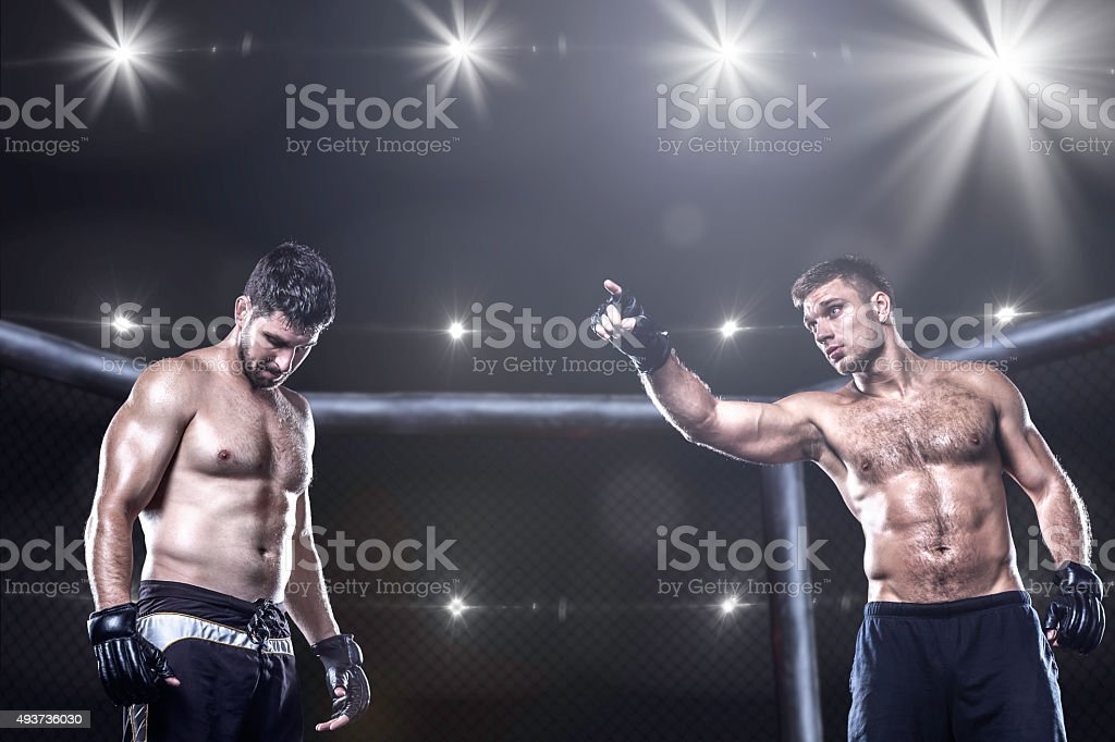 MMA fighters in octagon arena before fight stock photo