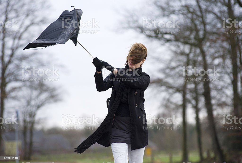 Fighting against the wind royalty-free stock photo