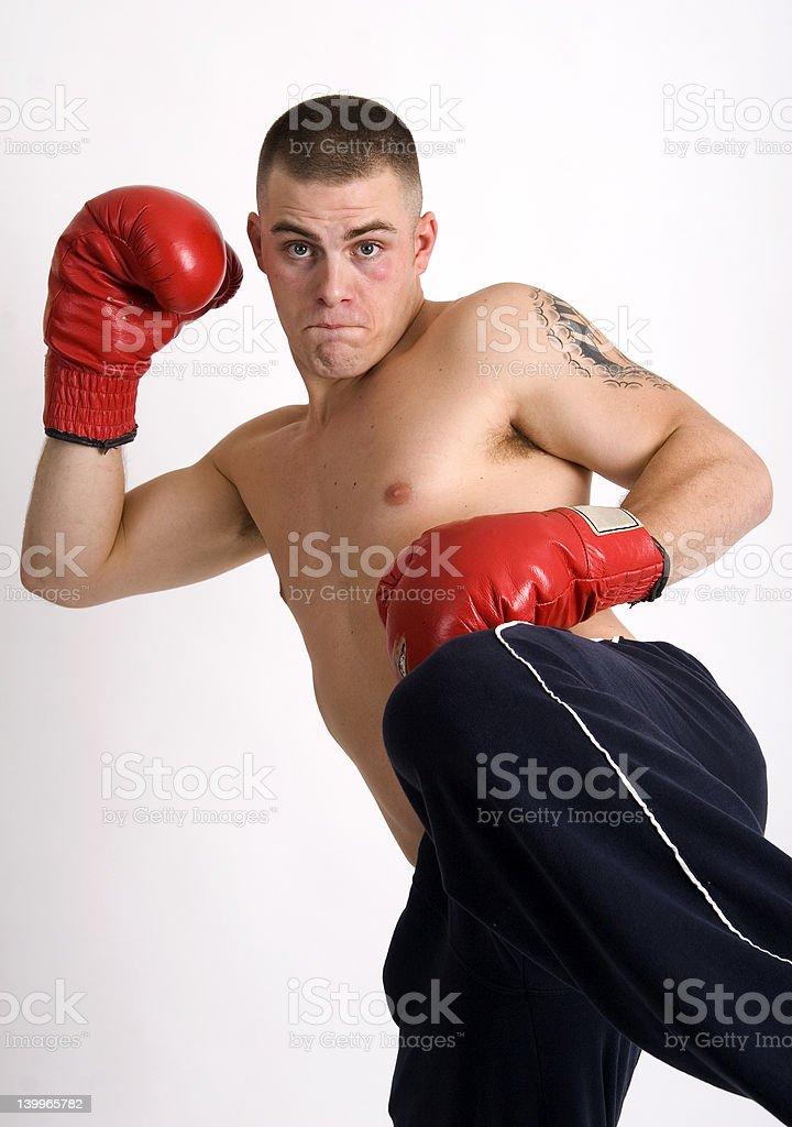 Fighting mad stock photo