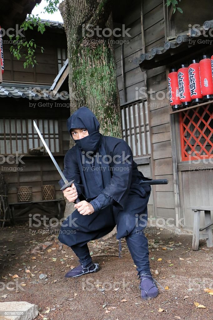 Fighting Ninja stock photo