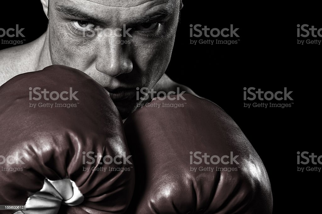 Fighting stance royalty-free stock photo