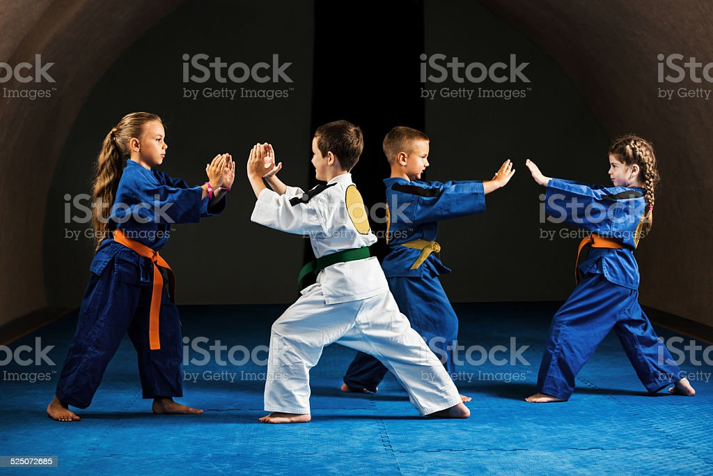 Fighting stance. stock photo