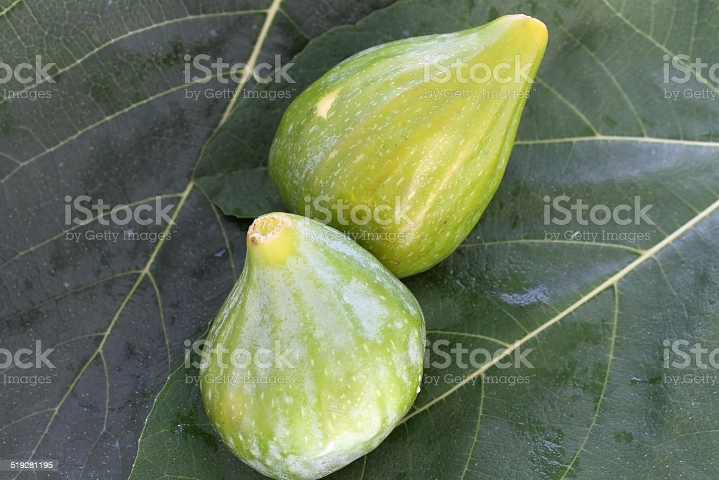 Figs on fig leaf background stock photo