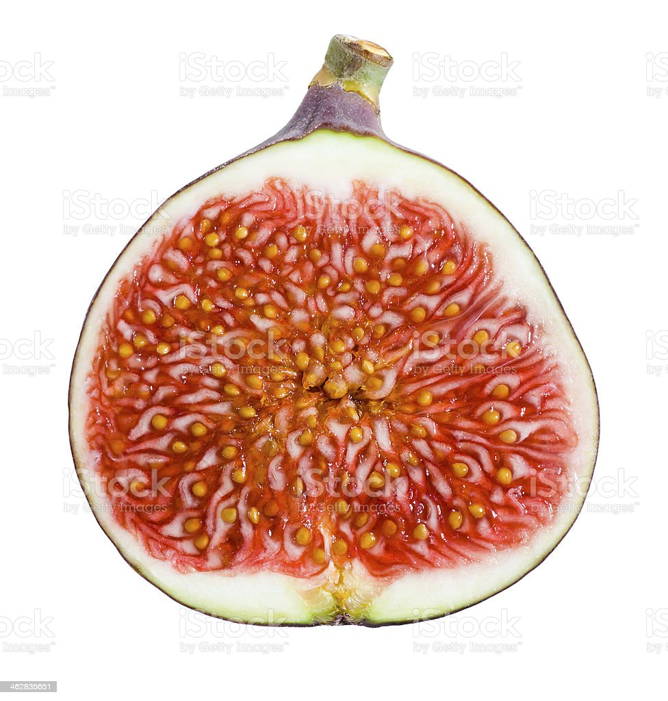 Figs. Ripe Fruit. Half on white background stock photo