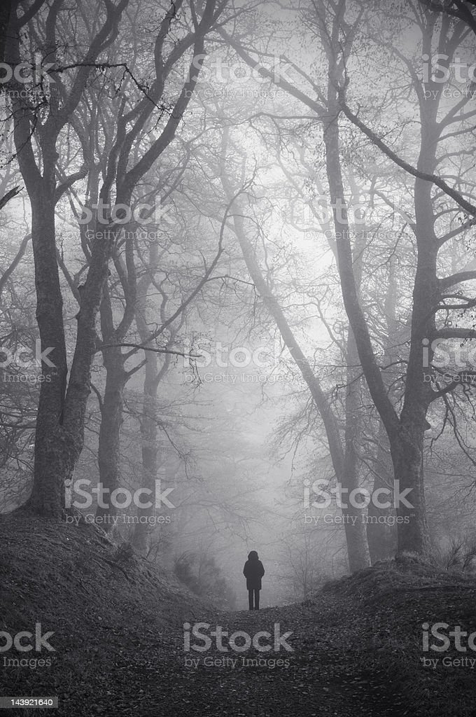 Figure in misty woodland stock photo