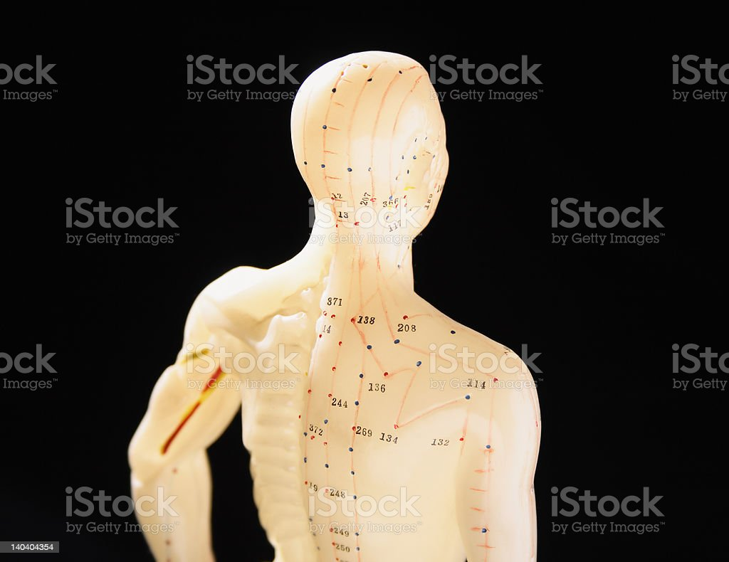 figure showing acupuncture points 2 royalty-free stock photo