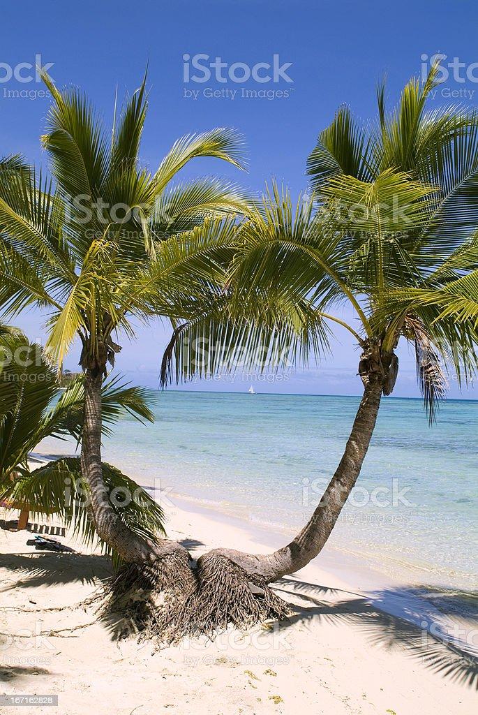 Fiji, Beach royalty-free stock photo