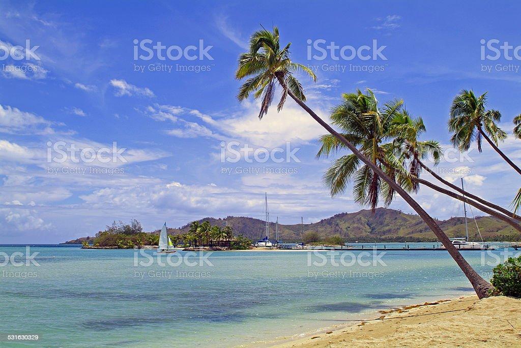 Fiji Island stock photo