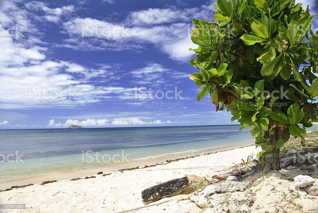 Fiji royalty-free stock photo