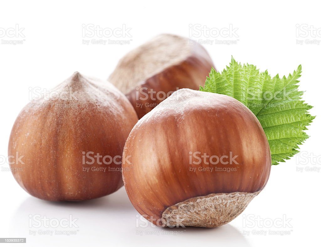 Filbert nuts. stock photo