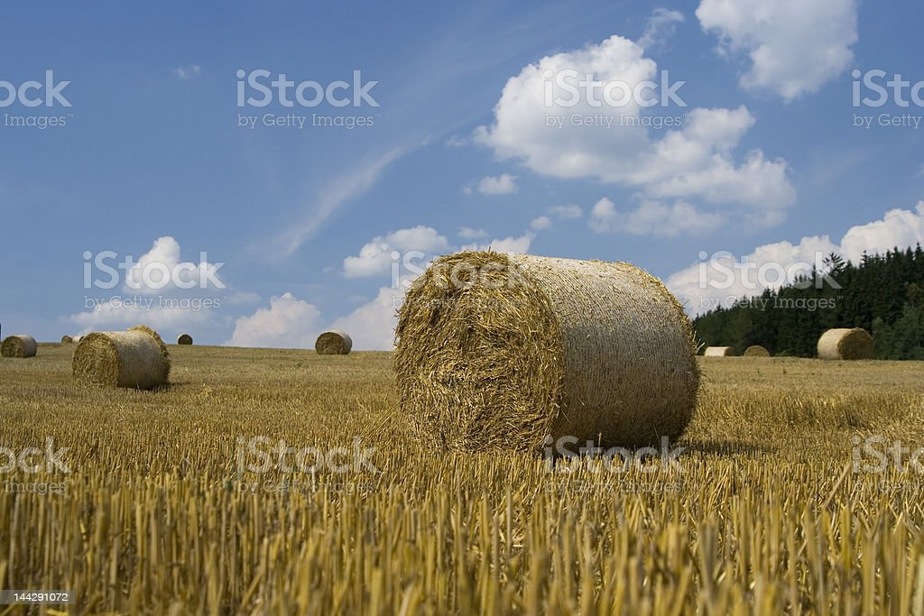 Filed with hay bale royalty-free stock photo