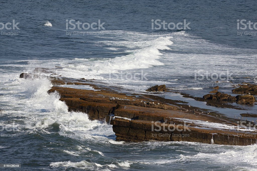 Filey Brigg, North Yorkshire, England. stock photo