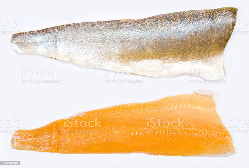 Fillet of Arctic Char Fish stock photo