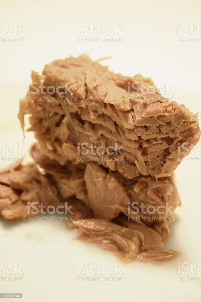 fillet of canned fish meat royalty-free stock photo