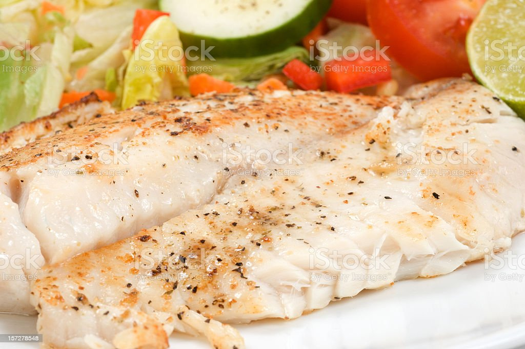 Fillet of Fish and Salad stock photo