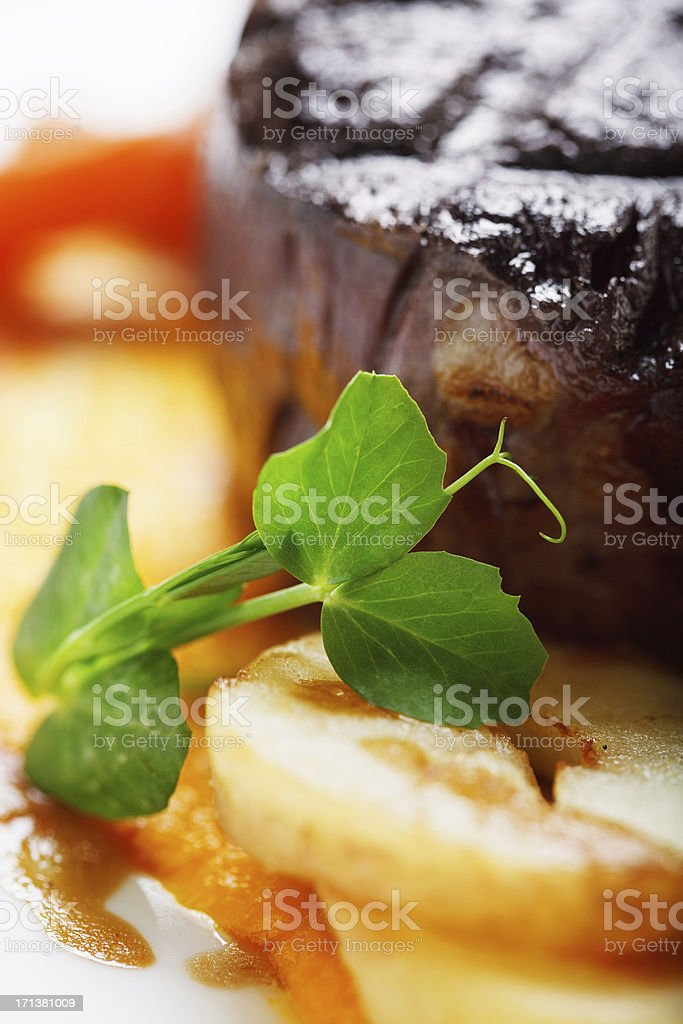 Fillet steak with vegetables and herbs royalty-free stock photo