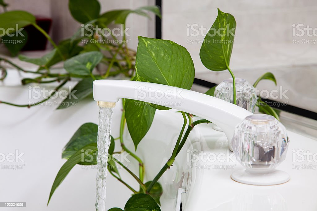 Filling a Garden Bathtub stock photo