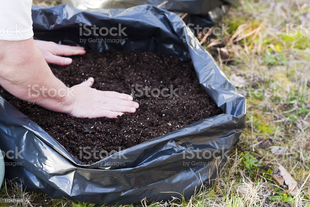 Filling Potato Grow Bags with Soil stock photo
