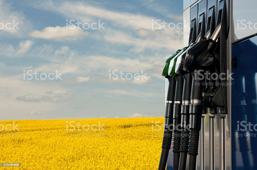 filling station stock photo