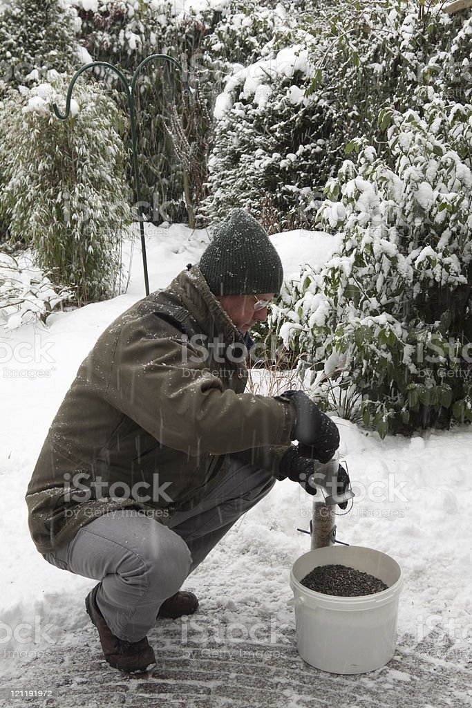 filling the bird feeder in winter stock photo