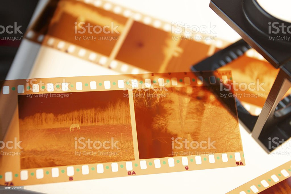 Film negatives royalty-free stock photo