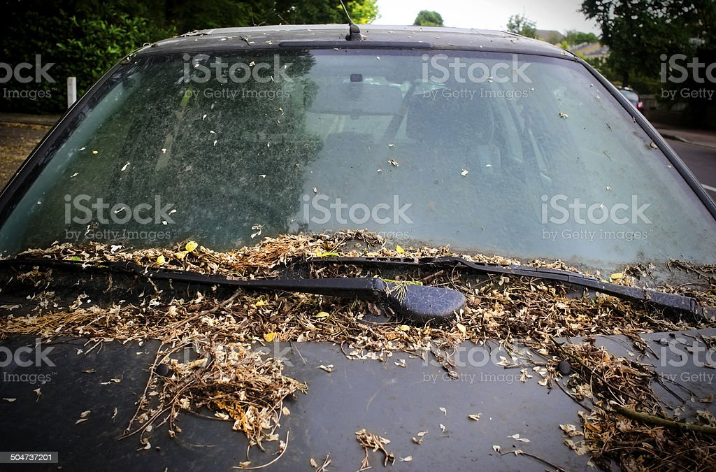 Filthy abandoned car royalty-free stock photo