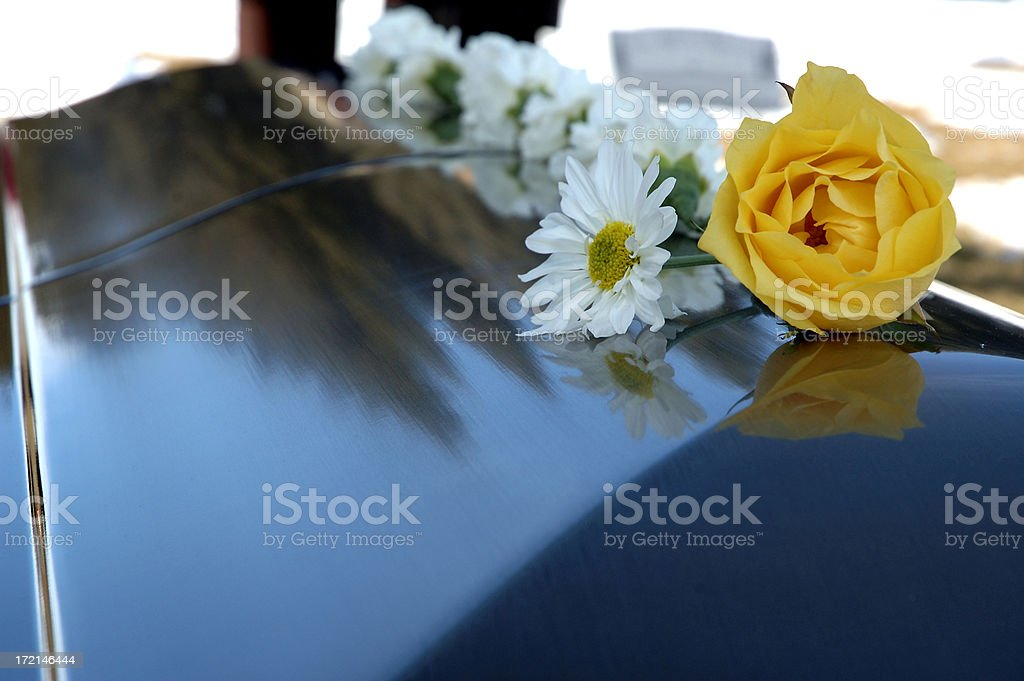 Final Rest royalty-free stock photo