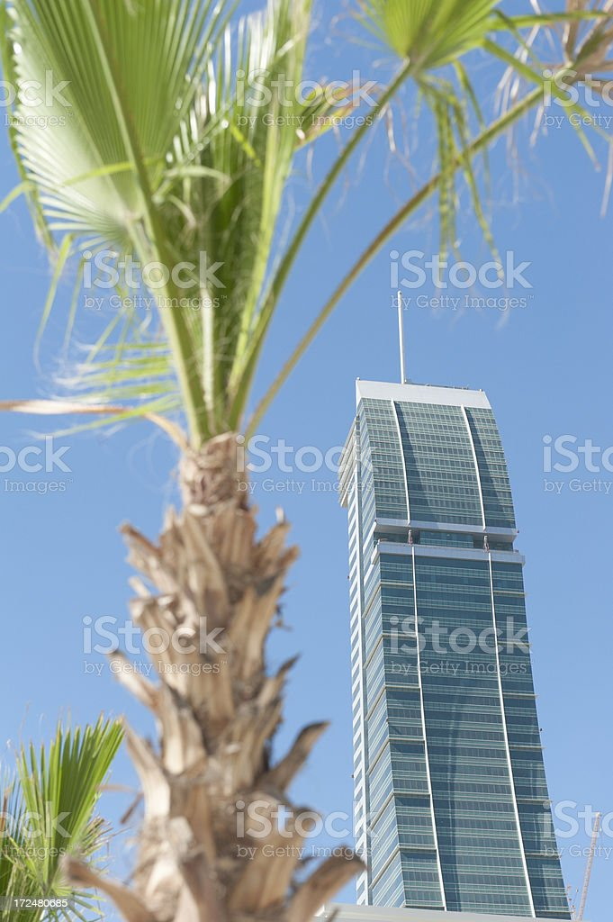 financial building in Bahrain with palm tree royalty-free stock photo