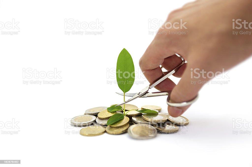 Financial Cutoff royalty-free stock photo