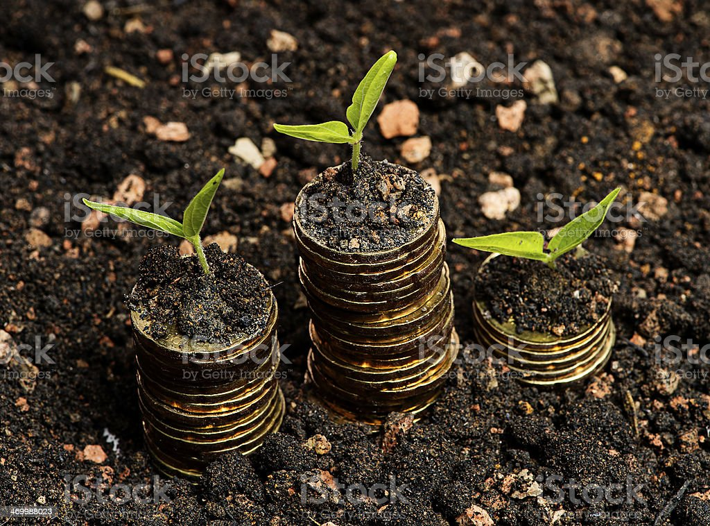 Financial Growth concept stock photo