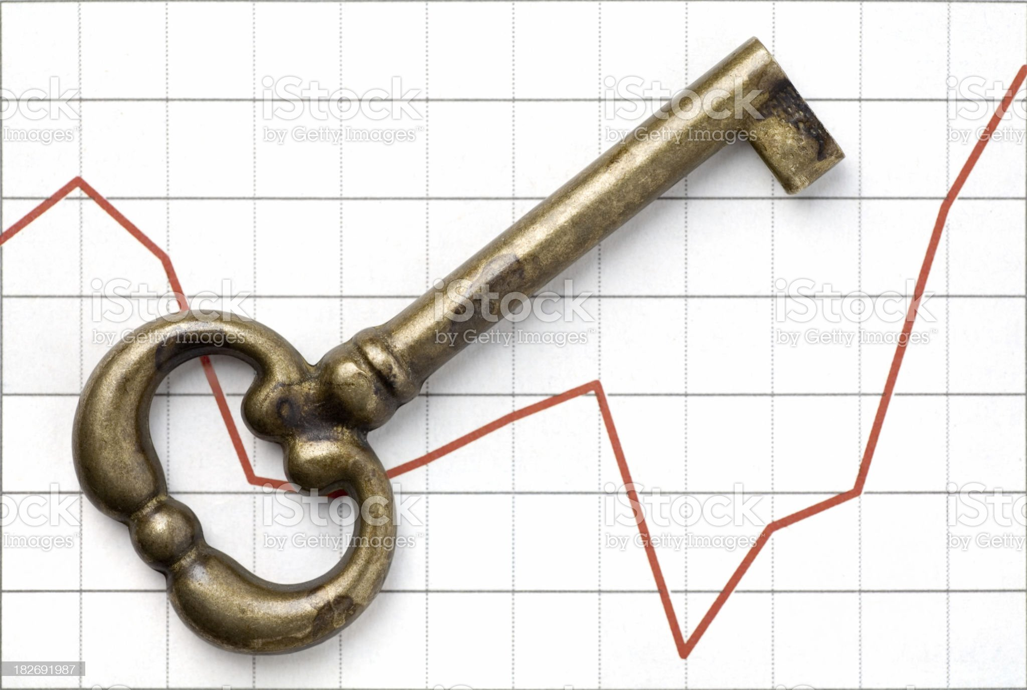 Financial Security royalty-free stock photo