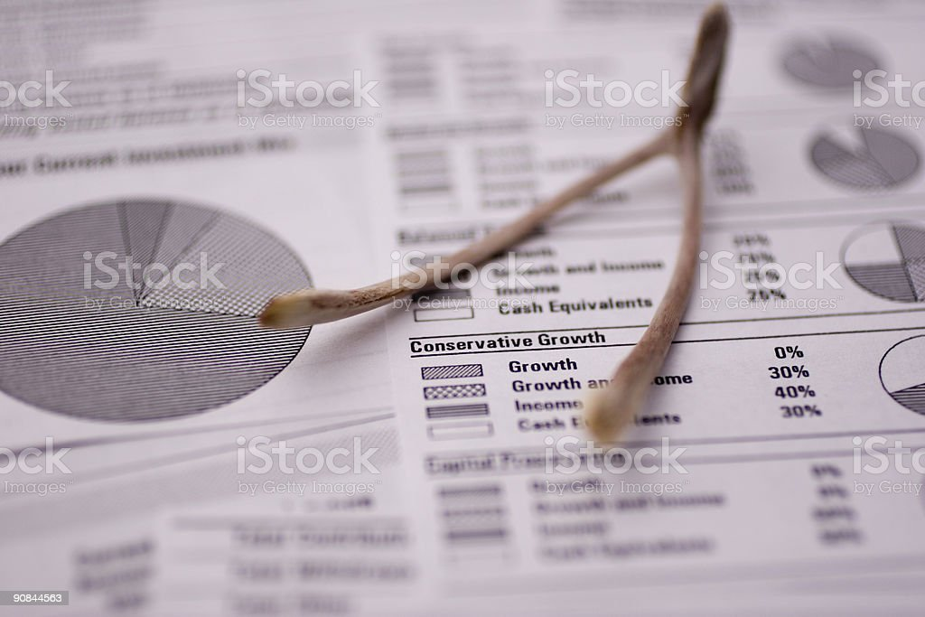 Financial Spreadsheet royalty-free stock photo