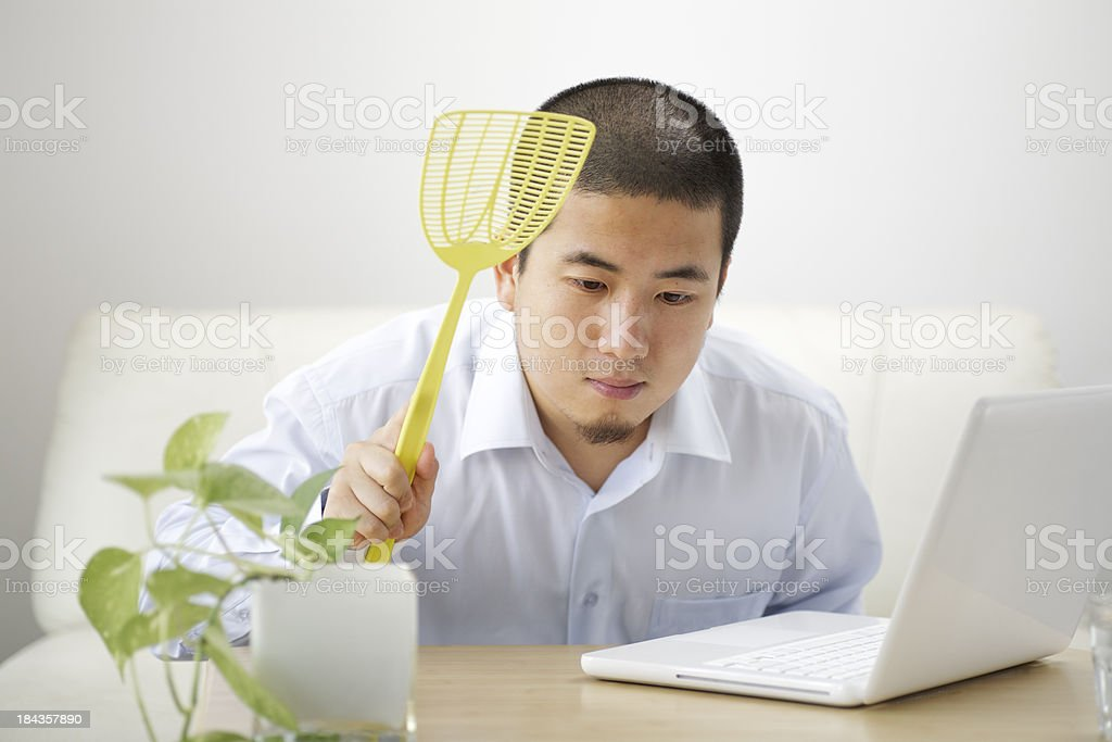 Find a bug royalty-free stock photo