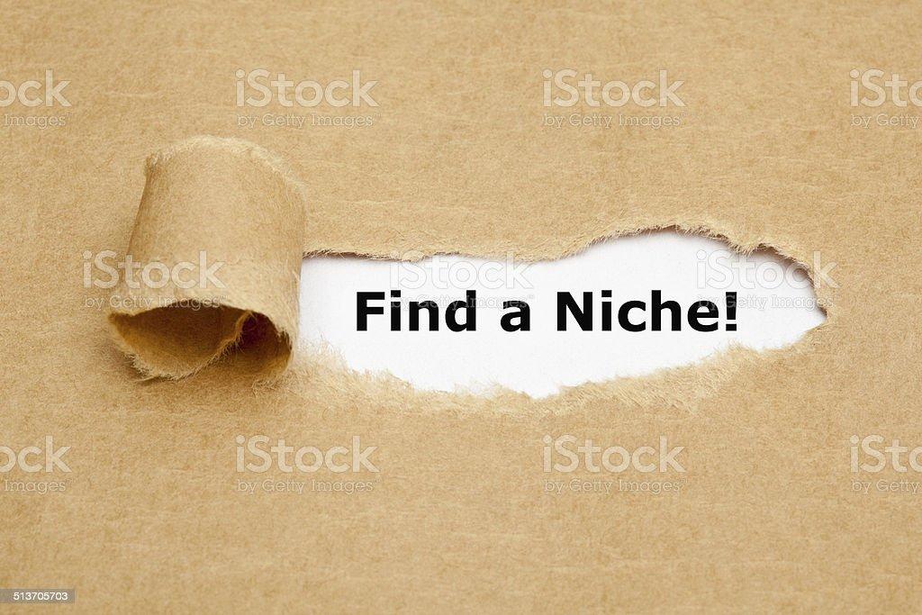 Find a Niche Torn Paper Concept stock photo