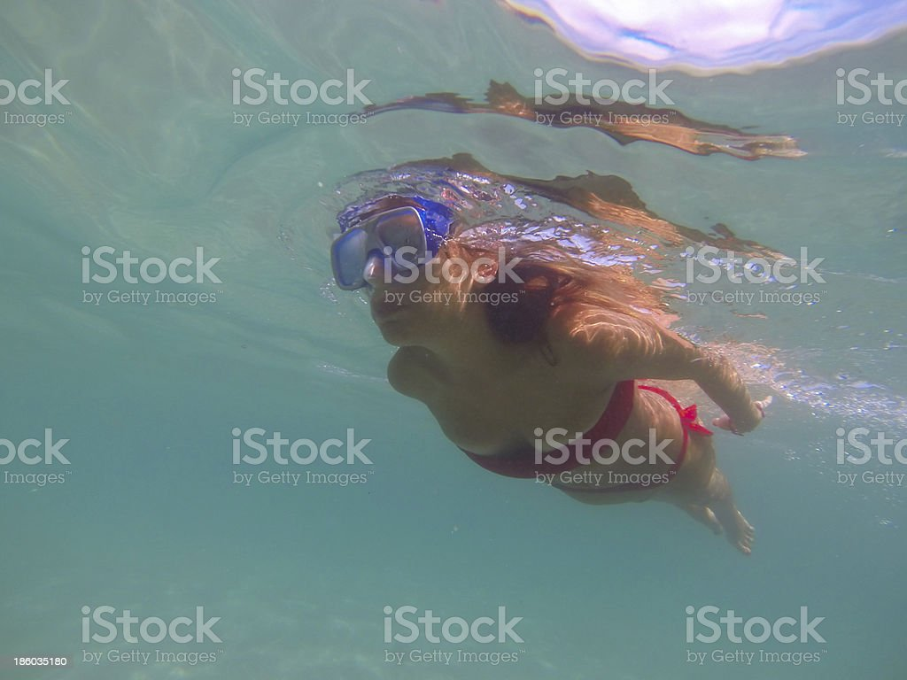 Finding Fishes royalty-free stock photo
