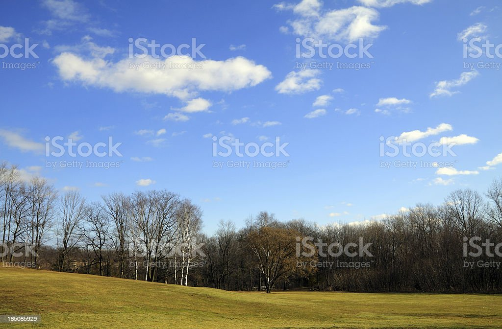 Fine Day stock photo