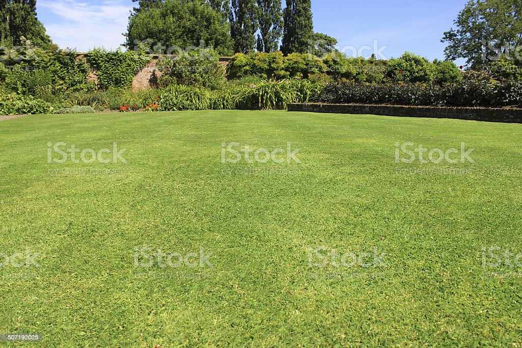 Fine green grass image, mown garden lawn turf, flower border stock photo