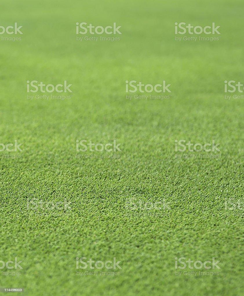 fine green grass royalty-free stock photo