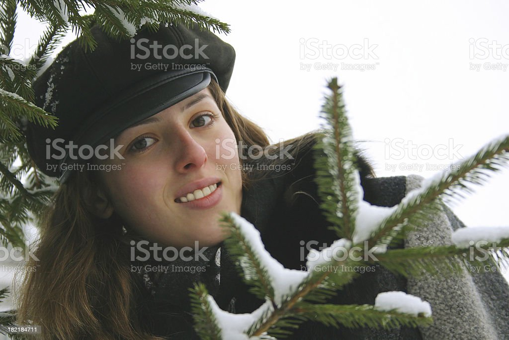 Fine season stock photo