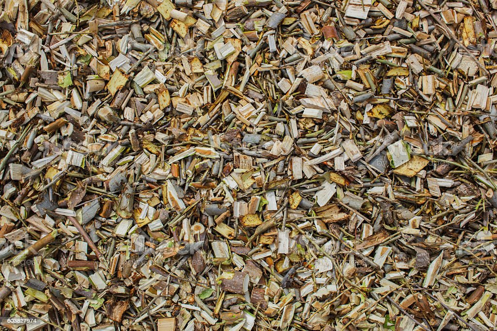 Finely chopped tree branches. stock photo