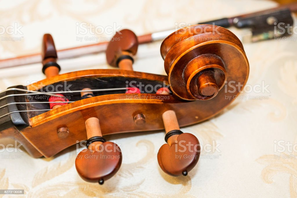 fingerboard of double bass, string instruments concept - close-up on scroll of double-bass, classical music orchestra, violin, head, nut, machine heads, neck, string, macro stock photo