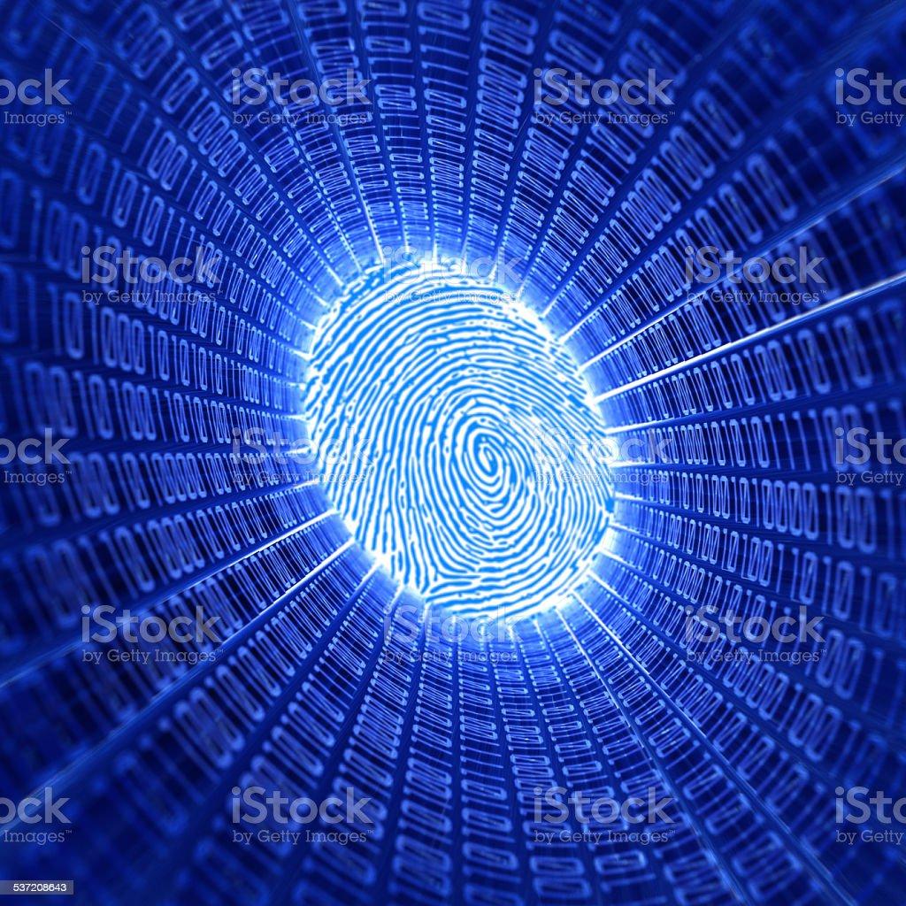 fingerprint and binary code stock photo