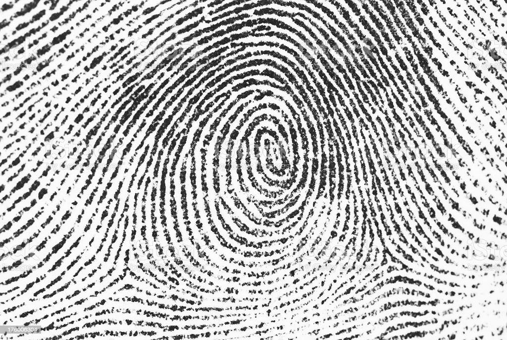 Fingerprint detail stock photo