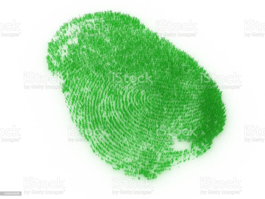Fingerprint from grass royalty-free stock photo