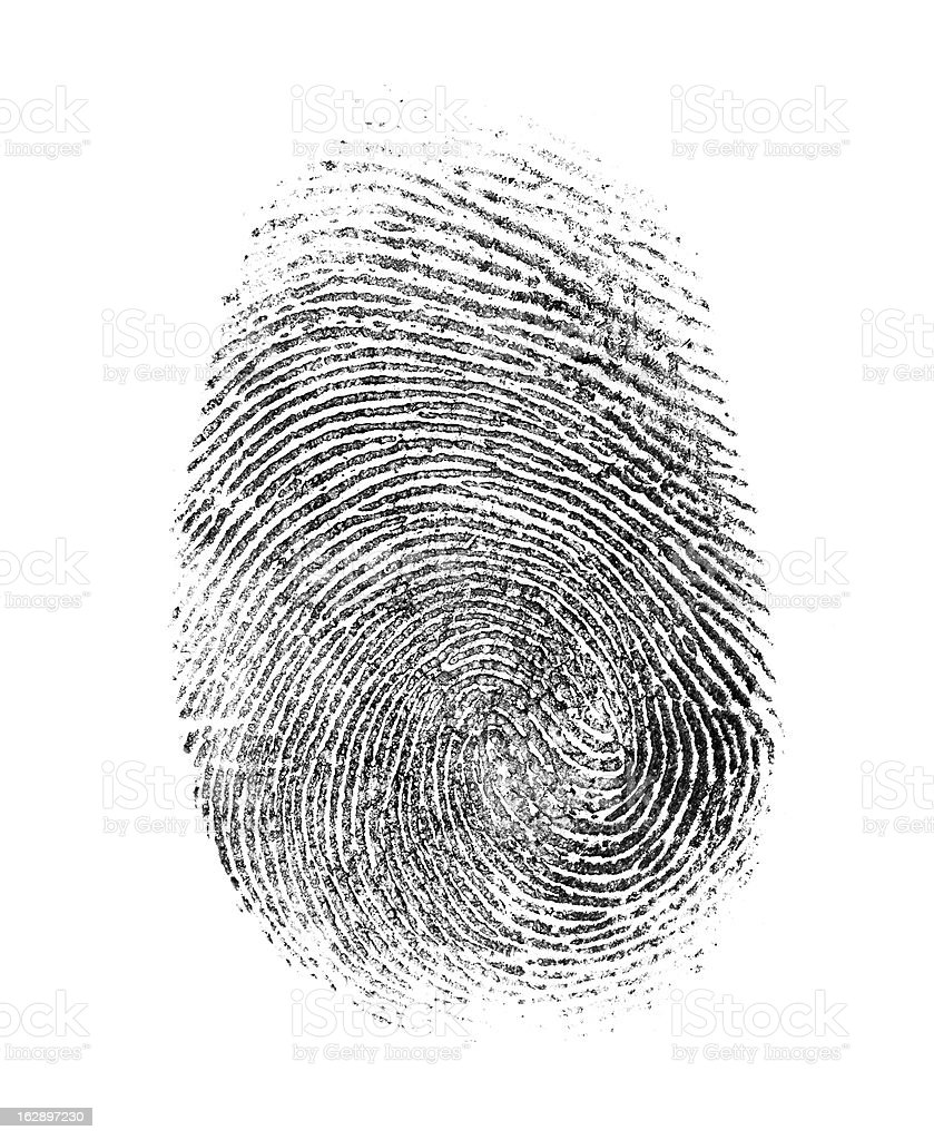fingerprint isolated on white stock photo