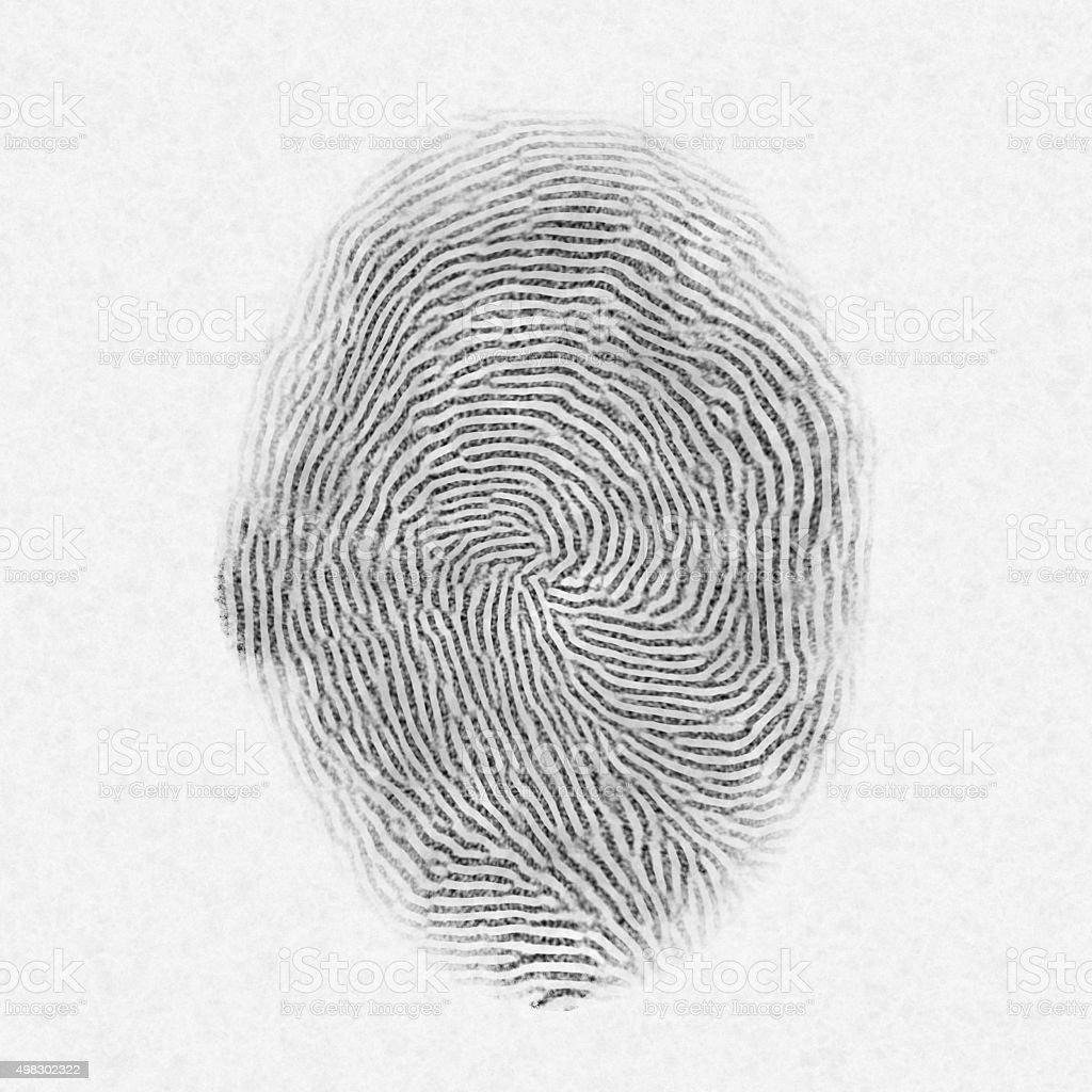 Fingerprint on white paper stock photo