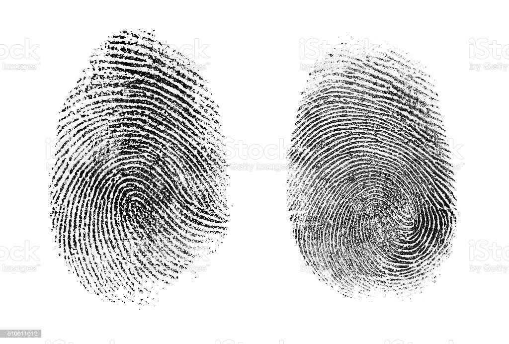 fingerprint or thumbprint set isolated stock photo