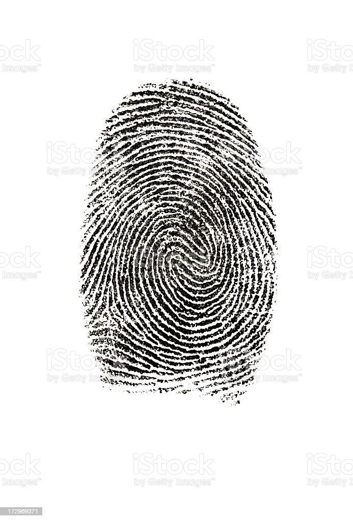 Fingerprint photographed on white background. royalty-free stock photo