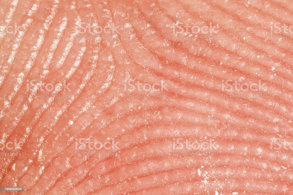 Fingerprints close up stock photo